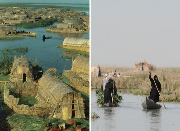 iracka-mocvara-5