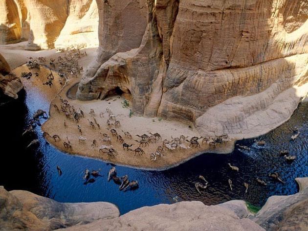 Guelta-d'Archei-0