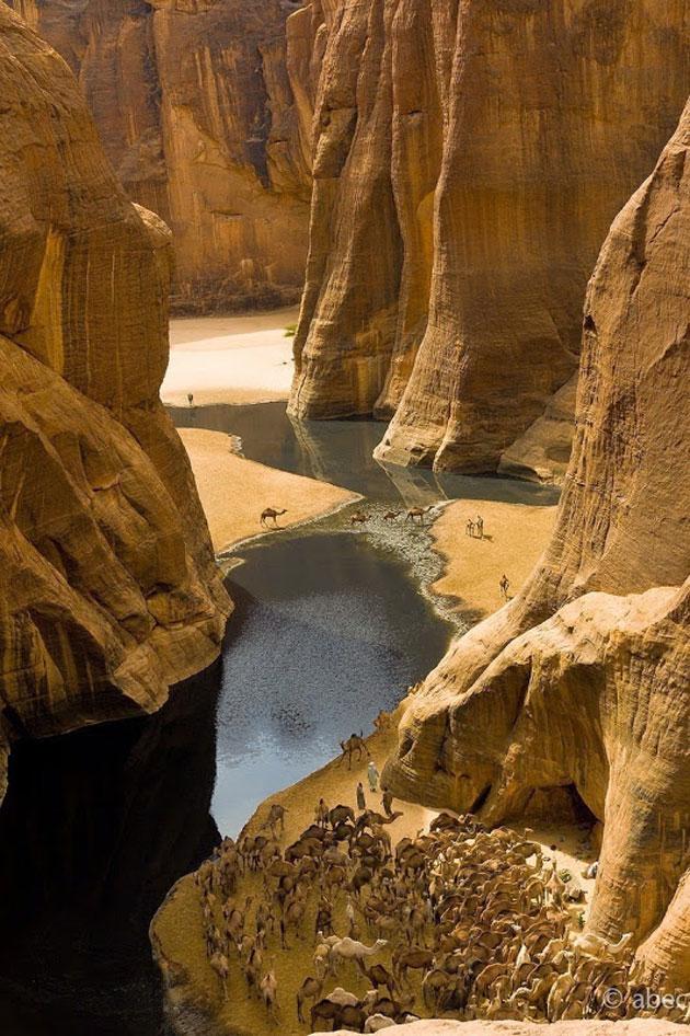 Guelta-d'Archei-5