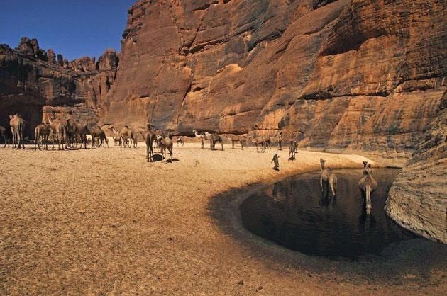 Guelta-d'Archei-6