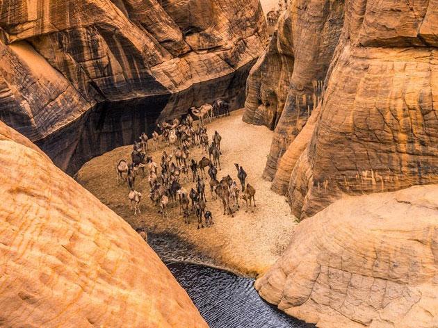 Guelta-d'Archei-7