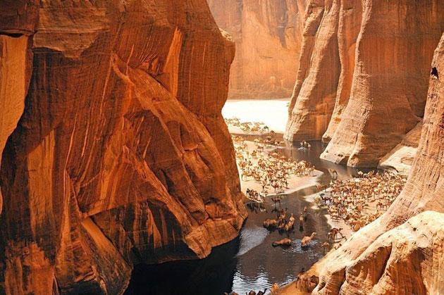 Guelta-d'Archei-8