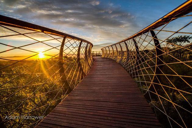 Kirstenbosch-9