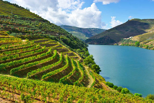 Dolina-Douro-11