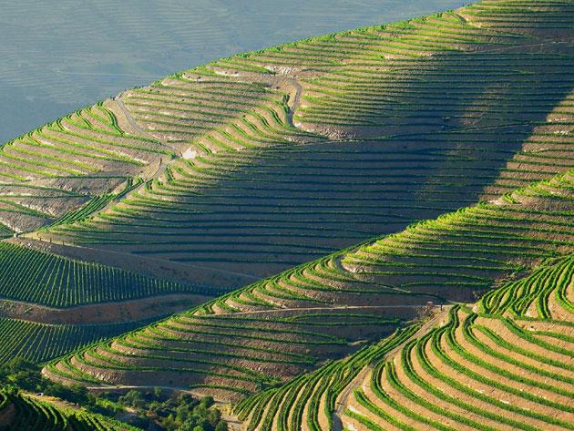 Dolina-Douro-2