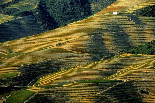 Dolina-Douro-4