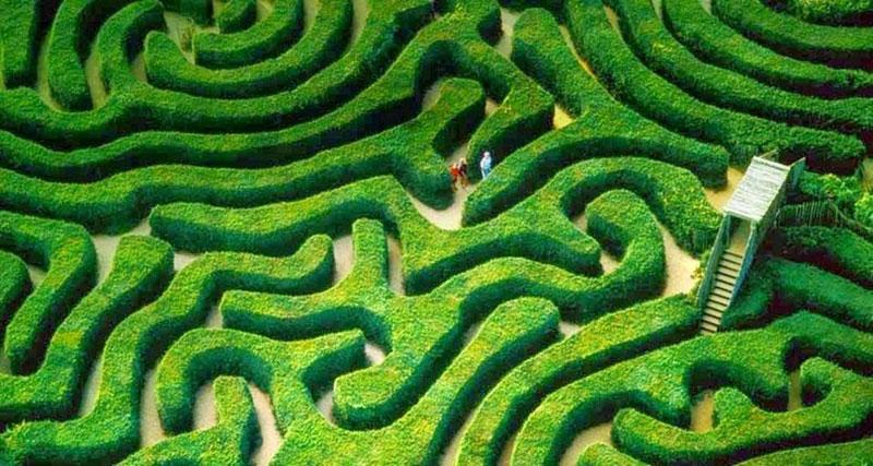 Longleat-labirint-1