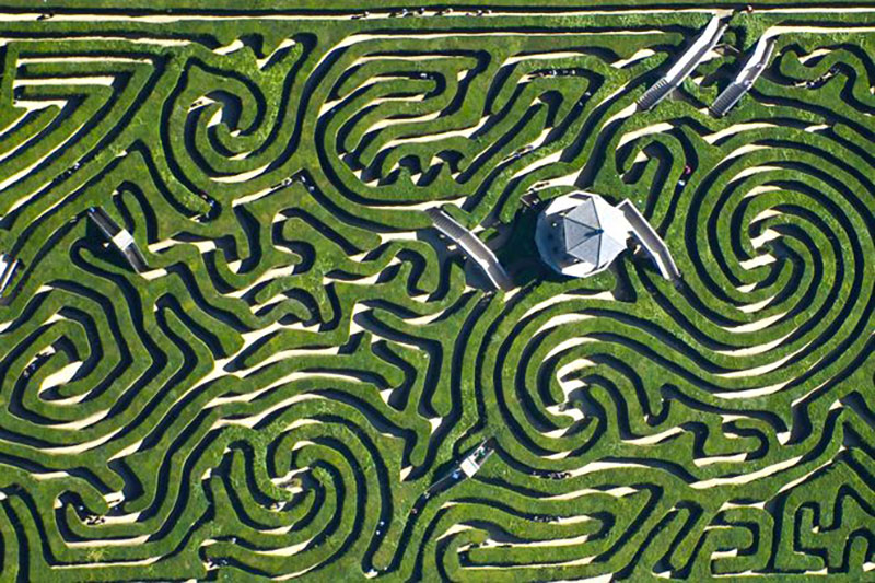 Longleat-labirint-5