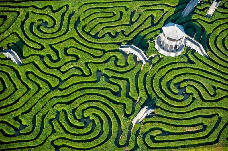 Longleat-labirint-7