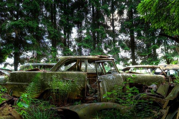 auto-groblje-5